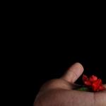 Prowadzenie bloga pod pseudonimem – szkodzi, pomaga, czy nie ma znaczenia?